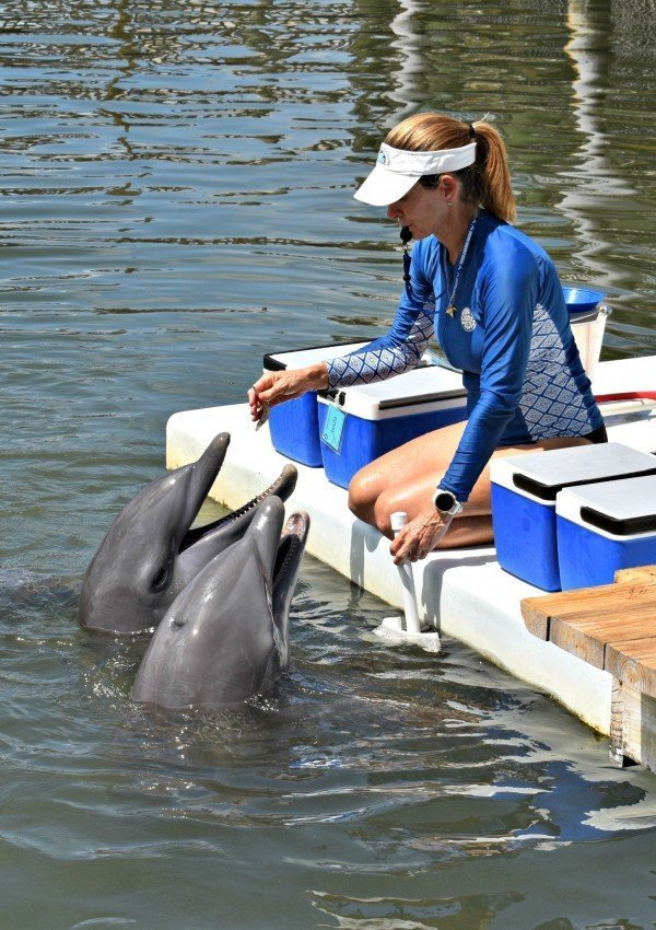 Top 10 Things to do with Kids in the Florida Keys