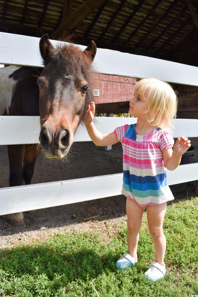 Lizzie petting a pony