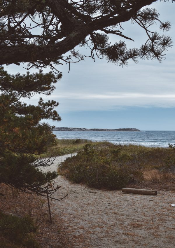 The Best Things to do in Phippsburg, Maine